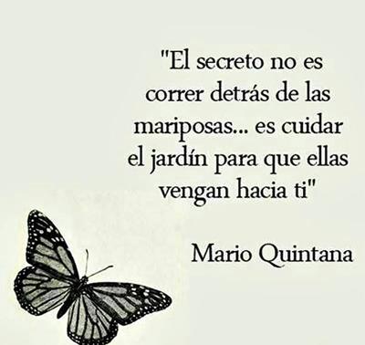 Mariposa-Jardin_400